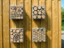 storage container - wasp nesting box
